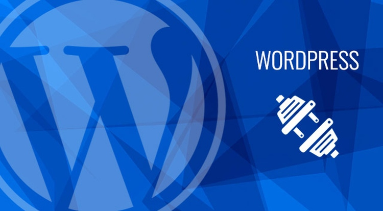 wordpress vtičniki